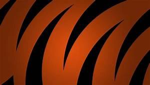 Tiger stripes HD desktop wallpaper : Widescreen : High ...
