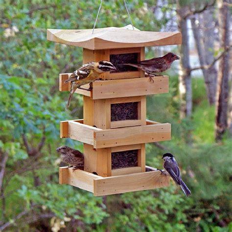 hanging bird feeder plans birdcage design ideas