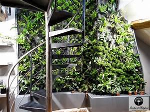 Mur Anti Bruit Végétal : top mur vgtal duorchide with bloc mur vegetal ~ Melissatoandfro.com Idées de Décoration
