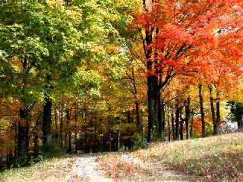frank sinatra autumn leaves  youtube