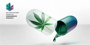 Hebrew University Launches Cannabis Research Center ...