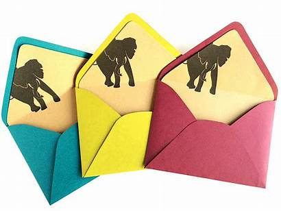 Envelope Liners Liner Colorful Invitation Paper Envy