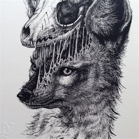 dibujos de paul jackson  animales  sus esqueletos