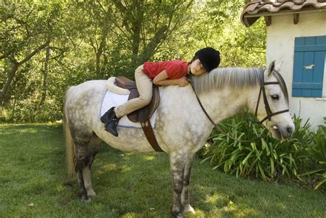 pony horse breeds ponies welsh riding children child cob connell kate getty choice photographer