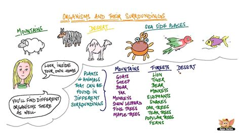 Living Organisms And Their Habitats