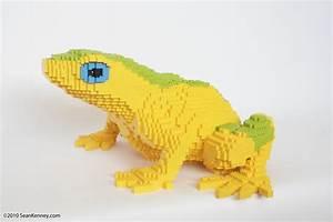 Sean Kenney - Art with LEGO bricks : Frog