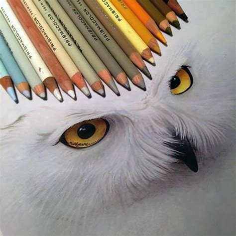 lovely photorealistic drawings    colored