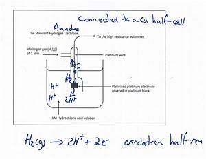 Voltaic Cell  Standard Hydrogen Electrode Demonstration