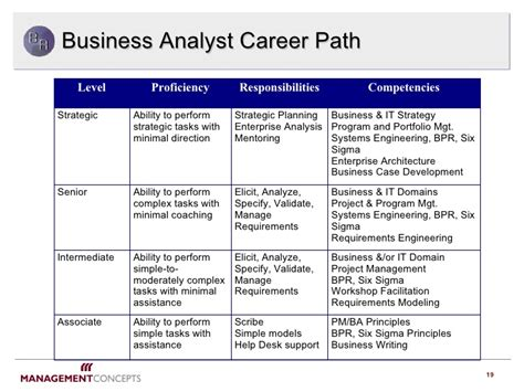 business analyst  pivotal role   future