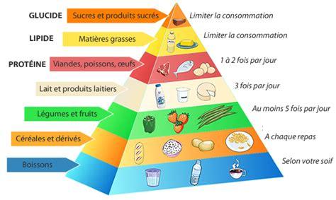 l plus code model pyramide alimentaire un outil simple pour une