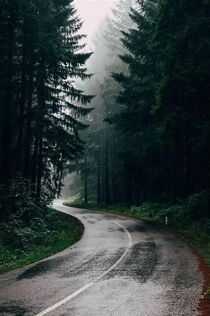 Unsplash Road Nature Rain Forest Backgrounds Iphone