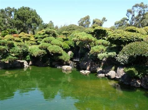 hayward japanese gardens picture of hayward japanese