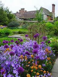 Cottage Garden Flowers Purple