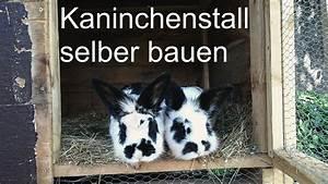 Schuhschrank Selber Bauen Billy : kaninchenstall mit freigehege selbst gebaut youtube ~ Watch28wear.com Haus und Dekorationen
