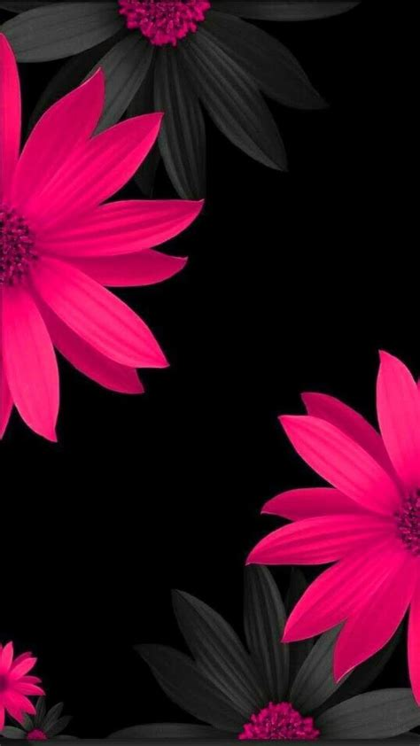 Flower Iphone Black Background Wallpaper by Pin By A On In 2019 Wallpaper Wallpaper