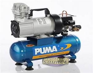 Puma 12 Volt 1 5 Gallon Oil Less Air Compressor Free