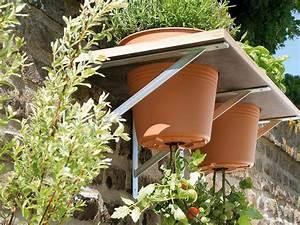 Tomaten Selber Anbauen : toom kreativwerkstatt upside down tomate ideen garten garten ideen und gem segarten ~ Orissabook.com Haus und Dekorationen