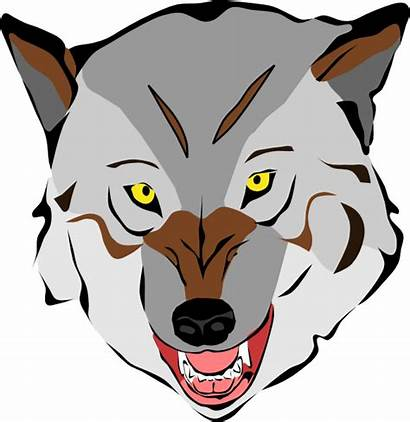Wolf Grey Clker Clip Clipart Royalty Domain