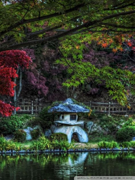 hidden pond lantern  hd desktop wallpaper   ultra