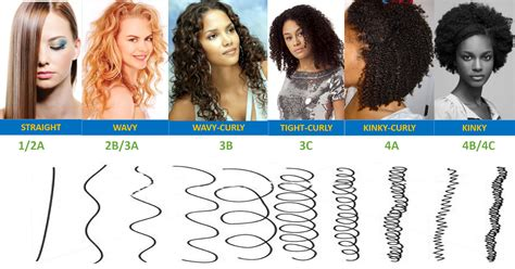Types Of Hair by What S Your Hair Type Adunni Organics