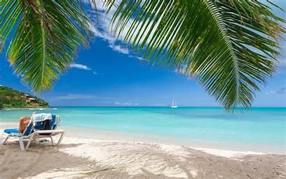 Caribbean Beach Tropical Summer Palm Landscape Paradise