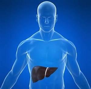 13 Common Liver Disease