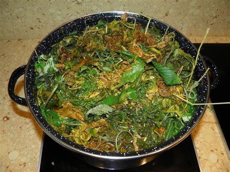 cuisine cannabis cuisine au cannabis du growshop alchimia