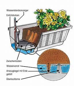 Blumenkästen Mit Bewässerung : blumenkasten aqua green plus incl bew sserung und real ~ Lizthompson.info Haus und Dekorationen