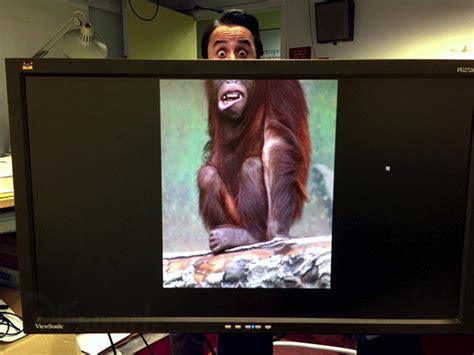ennui au bureau créer un zoo avec ses collègues quand on s 39 ennuie au
