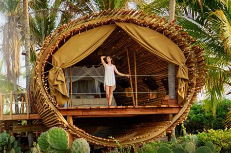 World's Epic Tree Houses You Can-the Active Times