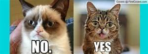 Grumpy Cat Quotes For Facebook. QuotesGram