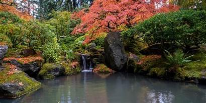Fall October Colors Japanese Garden Update Portland