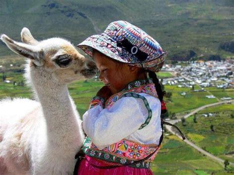 Wonderful Llama Photo by 67 Best Images About Llama On Machu Picchu