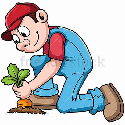 Farmer Crops Harvesting Cartoon Clipart Corn Vector