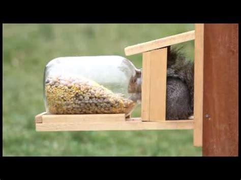 duncrafts squirrel jar feeder  youtube