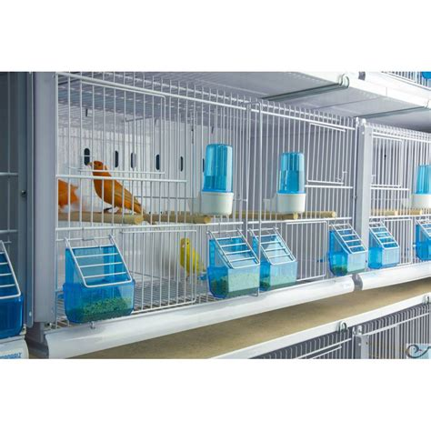 Canariz Gabbie New Canariz 12 Cages 64x30x34 Mod 232 Le Chion Ornibird