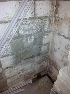 Peinture Pour Mur Humide : drainage sur mur enterr humide ~ Dailycaller-alerts.com Idées de Décoration