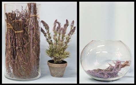 ingrosso vasi vasi e cesti da ingrosso torino erbamatta