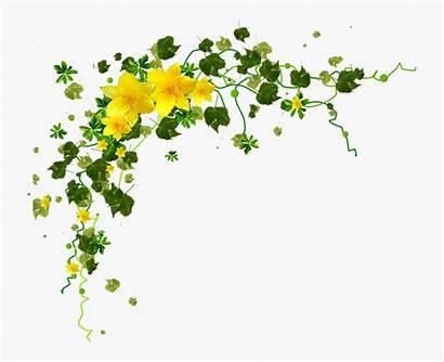 Yellow Flower Borders Clipart Rain Coin Clipartkey