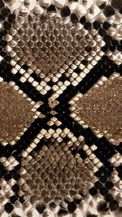 Snake Skin Snakeskin Patterns Wallpapers Pattern Texture