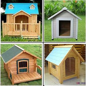 pets decks and minimalist home design on pinterest With cool dog kennel designs