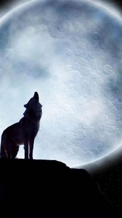 Wolf Iphone Lone Wallpapers Epic Quotes Hupages
