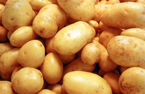 come cucinare il baccala con le patate come cucinare le patate ricette con patate facili e veloci