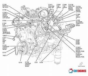 2001 Ford Focus Motor Diagram