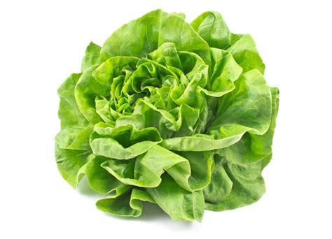 appareils cuisine salade laitue la vie grande épicerie et fraiche
