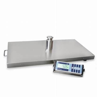Kg Scale Weighing Mobile Platform Cm 90x60