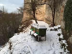 Was Machen Wespen Im Winter : landkreis 22 grad plus trotz minustemperaturen wie die ~ Lizthompson.info Haus und Dekorationen