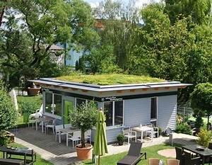 Dach Garage Bauen : dachbegr nung oase im asphalt dschungel ~ Michelbontemps.com Haus und Dekorationen