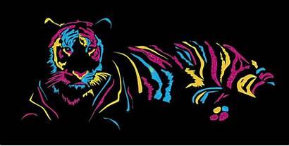Glitter Tijgers Plaatjes Gifs Tigres Animaatjes Neon