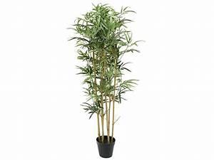 Bambous En Pot : bambou dans pot bamboo chez conforama ~ Melissatoandfro.com Idées de Décoration